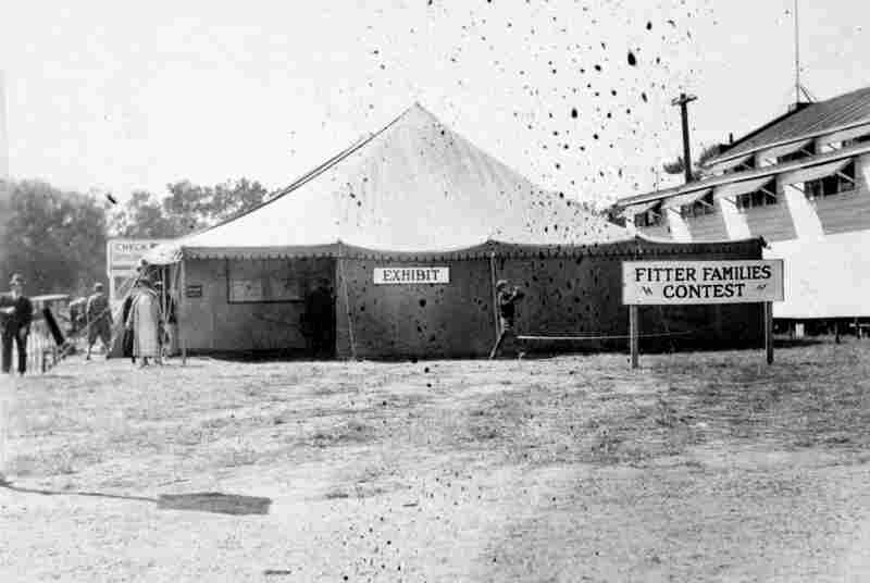 An exhibit and examination tent at an Eastern States Exposition.