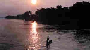 River Of Life - Congo Odyssey