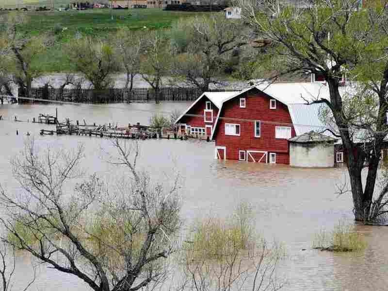 Barns are surrounded by the flooded Musselshell River west of Harlowton, Mont., on May 26.