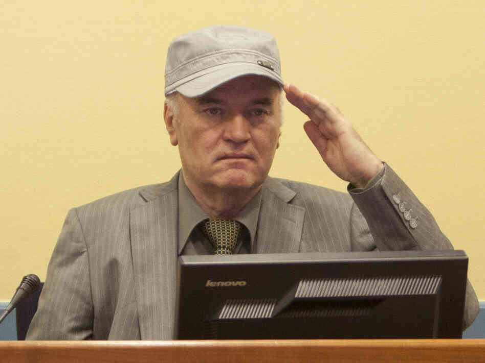 Ratko Mladic, during his appearance at the International Criminal Tribunal in The Hague, Netherlands, earlier today (June 3, 2011).