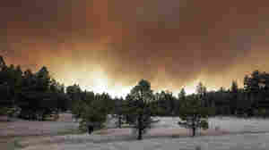 State Of Emergency In Arizona As Wildfire Spreads