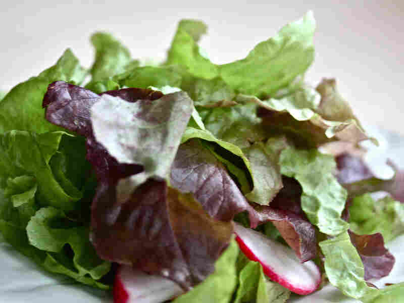 Catch-All Herb Salad With Lemon-Sage Vinaigrette