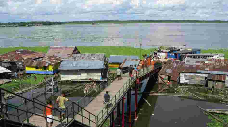The city of Iquitos, Peru, in the heart of the Amazon rain forest, has become a giant open-air laboratory to study the spread of dengue fever.