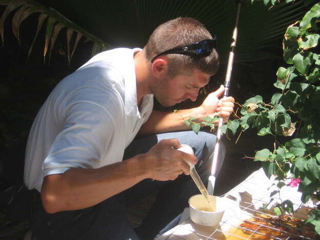 John David Snell inspects stagnant water at a foreclosed Key West home for signs of <em>Aedes aegypti</em> mosquito larvae. The mosquitoes, which transmit the dengue virus, have become more prevalent in the U.S.