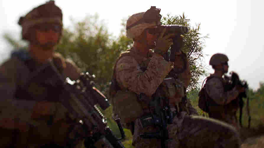 Marine Lt. Jeffrey Smith with Golf Company of the 2nd Battalion, 8th Regiment, on a patrol with Afghan forces  through a harvested poppy field in northern Marjah, Helmand province, Afghanistan.