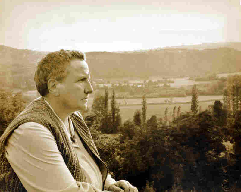 Gertrude Stein, Bilignin, 1931