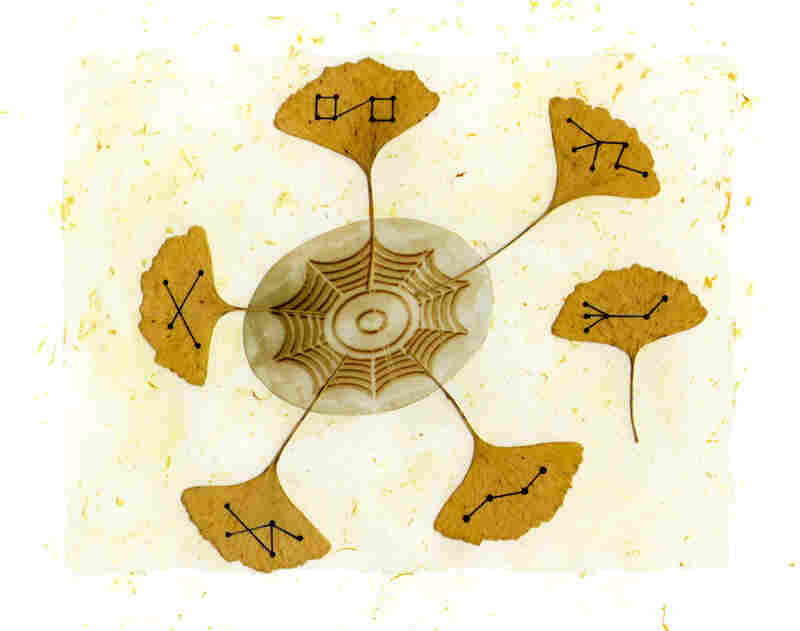 Jon Raskin's 'Gingko (Part 1 of 4)' from 2007. Each musician assigns a sound to each dot on the leaf; the middle is a group improvisation.