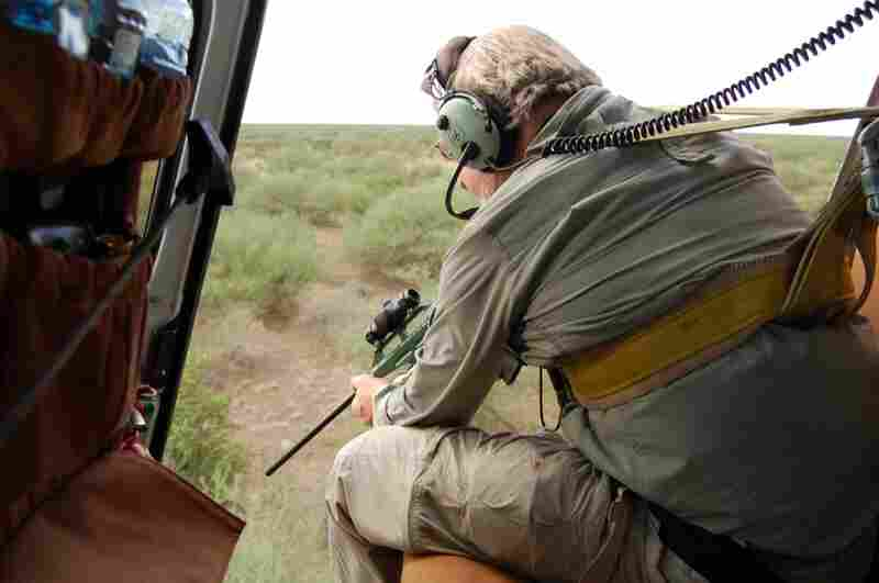 Veterinarian Mike Kock aims his tranquilizer gun out of a helicopter at an elephant in the bush below. Kock works with the New York-based Wildlife Conservation Society studying where animals migrate in South Sudan to better protect them from poachers and development.