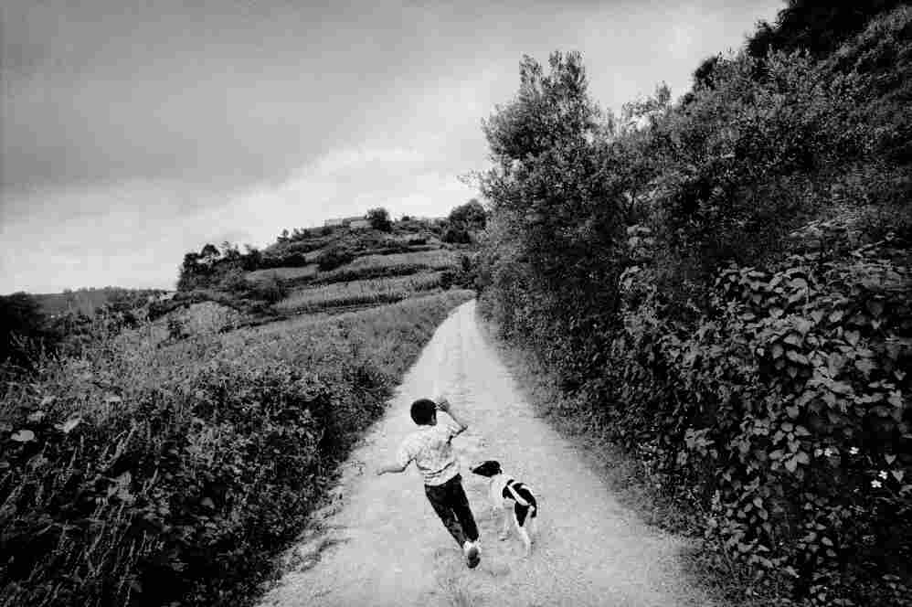 A boy plays with his dog outside town,   San Miguel Cuevas, Mexico.