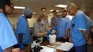 Charles Gross, a neuroscience professor at Princeton University, looks at a sheep brain with students at San Quentin as part of an Introduction to Biology class at the prison.