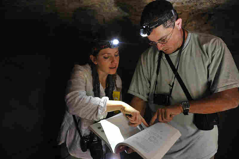 Archaeologists Stern and Dr. Boaz Zissu review the publication of his previous survey of the burial cave at Horvat Lavnin, in the Judean foothills, or Shefelah.