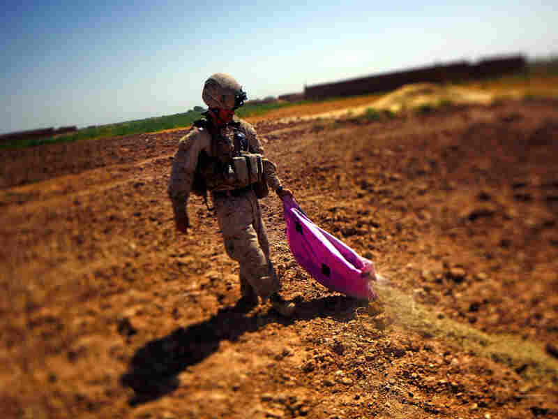 A Marine with Weapons Company of the 2nd Battalion, 8th Regiment, out of Camp Lejeune, N.C., dumps out a bag of poppy seeds discovered inside a farm house in Marjah, Helmand province, Afghanistan. Poppy seeds are confiscated and destroyed when found during clearing operations.