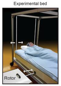 How some sleep scientists simulate a hammock.