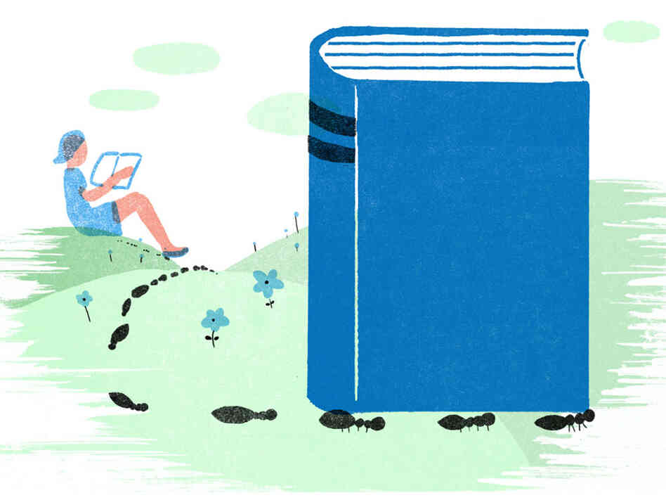 Illustration: Ants carry a book.