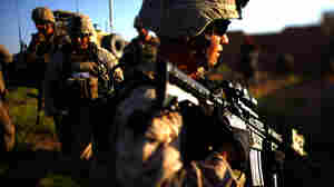 U.S. Marines on patrol earlier this month in Afghanistan's Helmand Province.