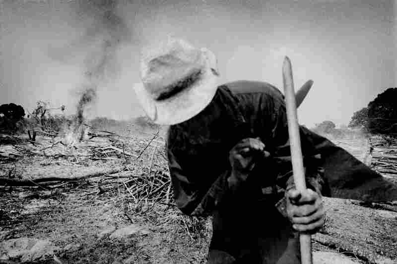 A farmer clears forest land to plant corn near the village of El Ciruelo, Mexico.