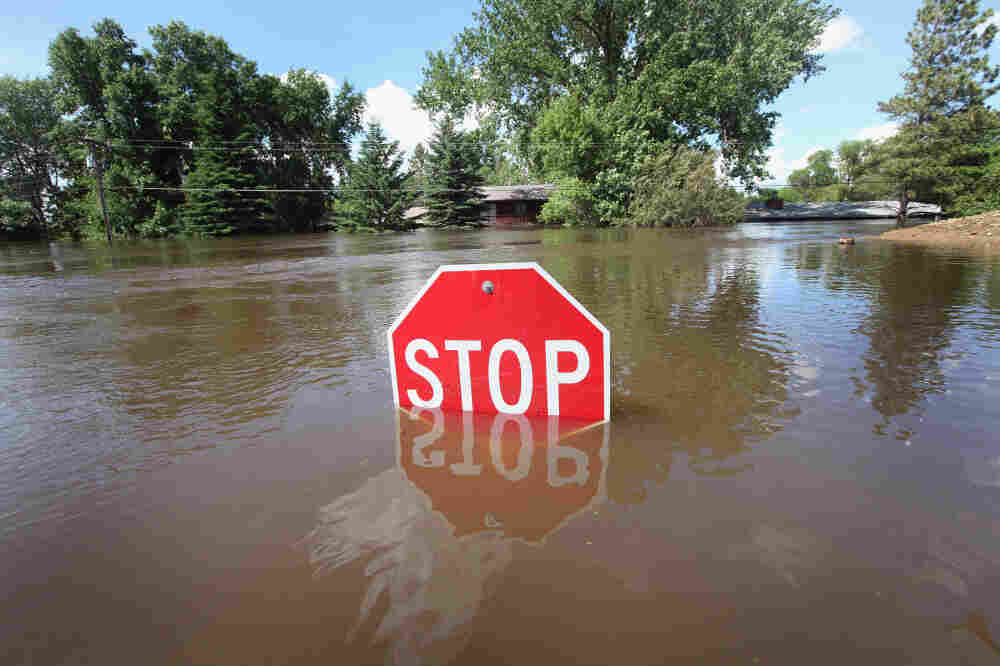 Floodwater nearly covers a stop sign in Burlington, North Dakota. The Souris River, which runs through Burlington and nearby Minot, crested early this morning after flooding more than 4,000 homes in the two communities.