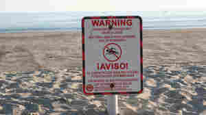 Environmental Group Rates 'Superstar' Beaches, And Their Dirty Brethren