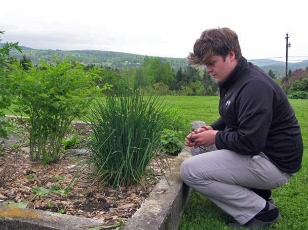 Finn Kane, a high school student, picks some things for dinner in his family garden outside East  Hardwick.