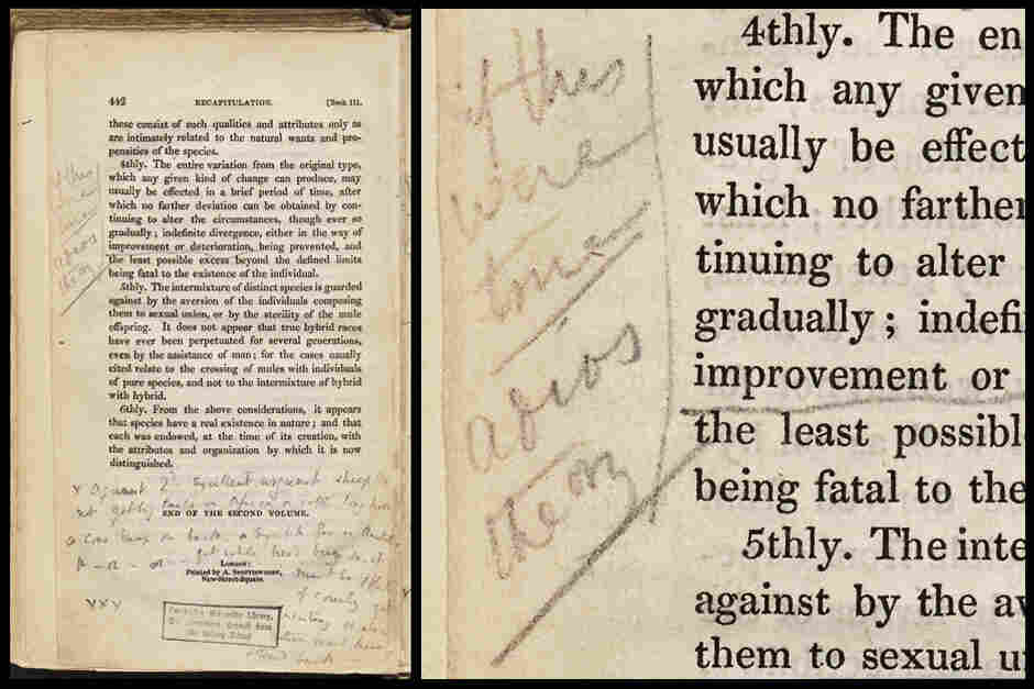 "Darwin's notes stating, ""If this were true adios theory"" from page 442 from Charles Lyell's Principles of Geology Vol. 2."