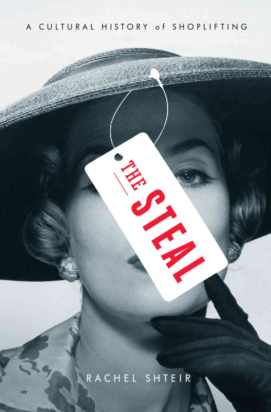 The Steal, by Rachel Shteir
