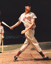 Ted Williams, 1939. These are the first color images taken of Ted Williams during his rookie year.