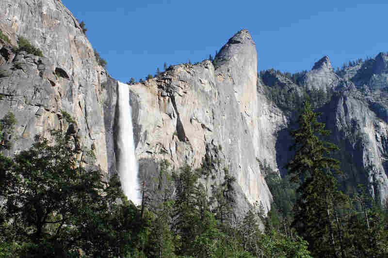 Bridalveil Fall as seen from the floor of Yosemite Valley. The park's waterfalls are running strong this year, thanks to heavy snowfall over the winter.