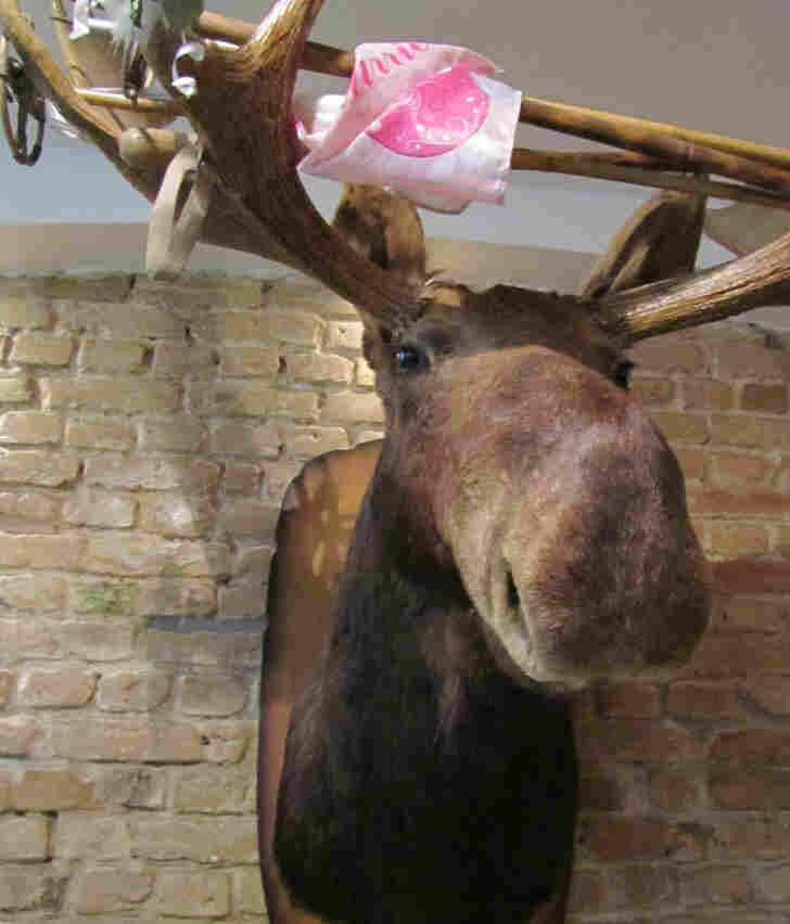 A moose heard hangs inside Ron Telesky Canadian Pizza.