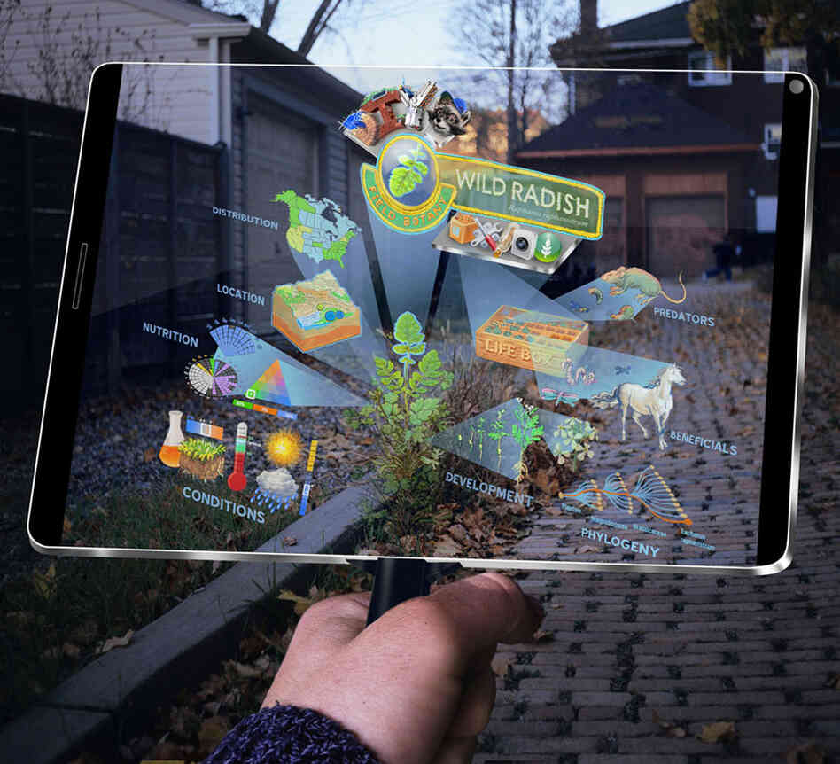 Augmented reality allows a user to identify an object from the real world — in this case, a plant — and digitally interact with it.