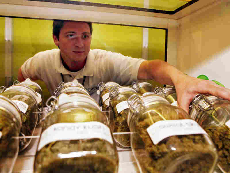 Ryan Cook reaches for a jar of medical marijuana at one of his clinics in Denver last month.  With over 300 dispensaries, the city now has more places to buy pot than Starbucks.