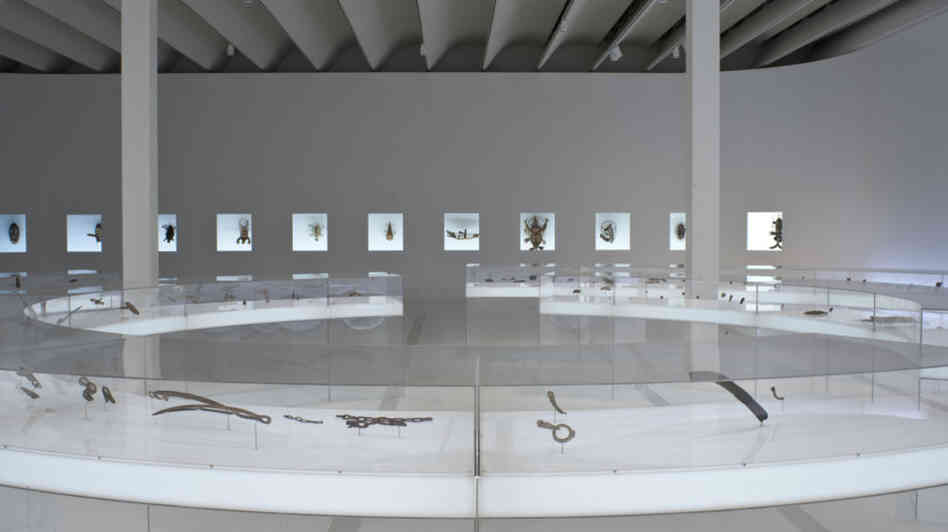 The Menil exhibit took out interior walls to create an enormous space that mimics the Arctic environment. The walls and floors are painted white, neon lighting creates northern-extreme daylight, and the floors curve a bit for a 'snowbank' effect.