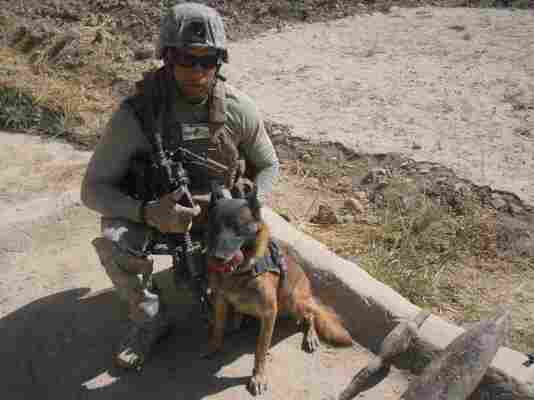 """Marine Cpl. Daniel Cornier and his colleague, Chaak, in Afghanistan. """"Pretty much trust him with my life,"""" Cornier says."""