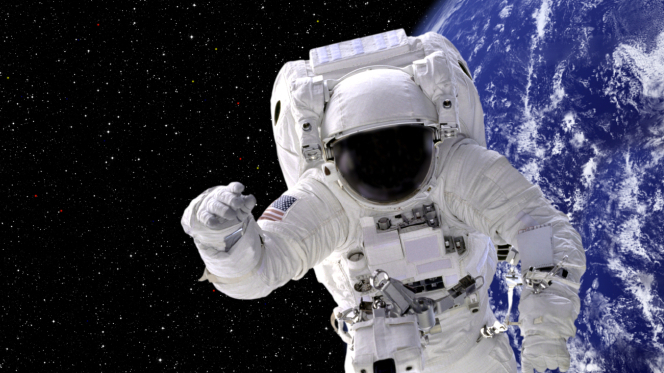 astronaut who was in space for a year - photo #27