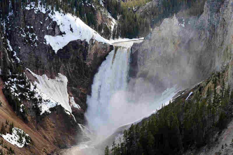 Lower Falls at the Yellowstone Grand Canyon