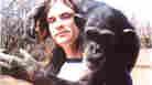 'Project Nim': A Chimp's Very Human, Very Sad Life