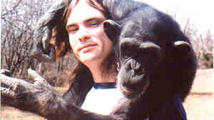 Bob Ingersoll (left) spent nine years with Nim, the subject of an experiment to see if apes could communicate with humans using sign language. Ingersoll is now the president of Mindy's Memory Primate Sanctuary.