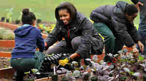 First Lady: Let's Move Fruits And Veggies To 'Food Deserts'