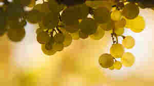 Sommelier Paul Grieco says the German Rieslings sold in the 1960s, '70s and '80s were sweeter than today's variety.
