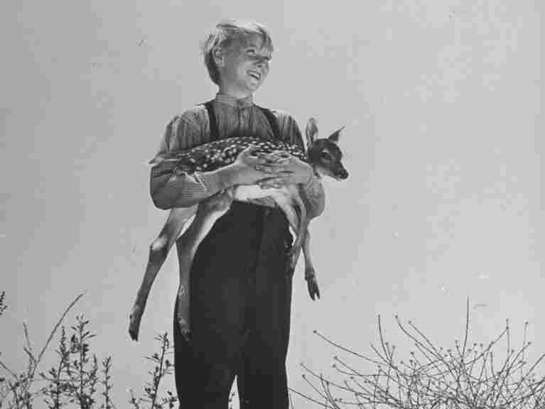 Claude Jarman, Jr., at age 11, holding a fawn on the set of The Yearling in 1946.