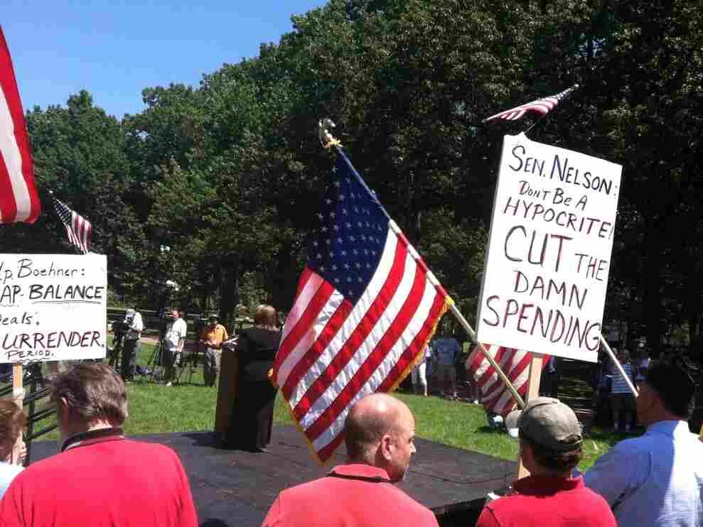 Tea Party rally near the U.S. Capitol, July 27, 2011.