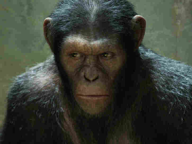 Andy Serkis plays Caesar in Rise of the Planet of the Apes. Caesar is entirely computer generated.