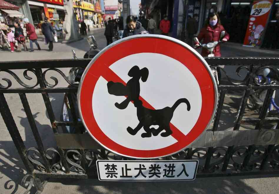 "A sign reading ""No Entry For Dogs"" is posted near the Confucius Temple in a file photo from Nanjing, China. The city sought to remove stray dogs in 2007, prompted by fears of rabies."
