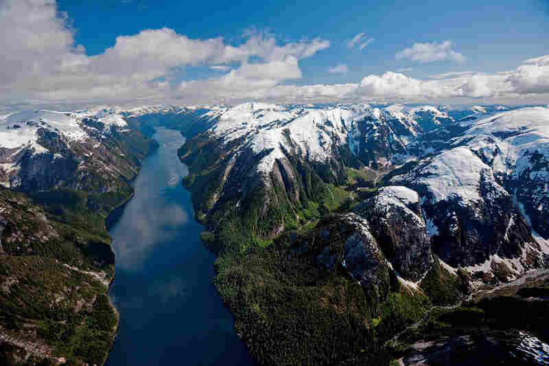 An aerial view shows Canada's Great Bear Rainforest.