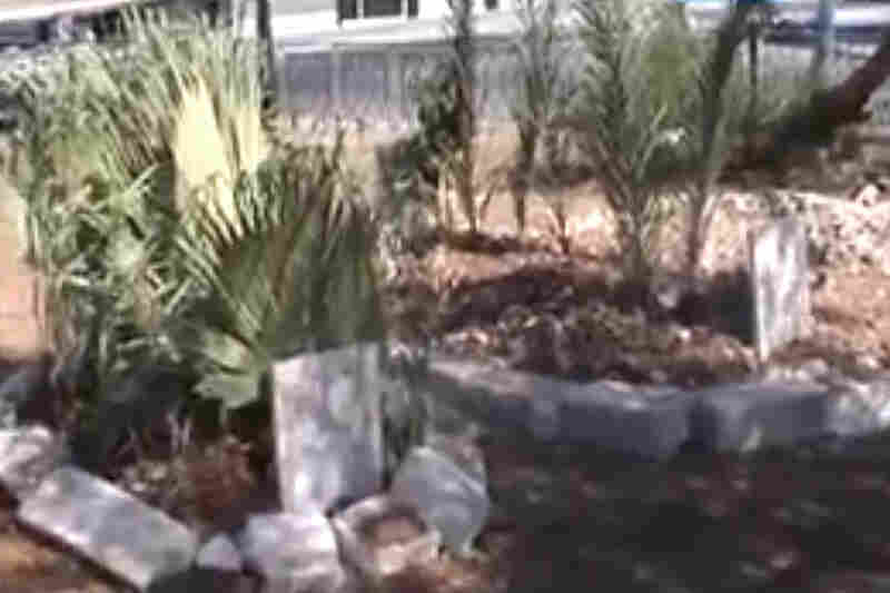 Hama residents have reported more than 100 killed in the fighting, and according to this video, some have been buried in public gardens and parks.
