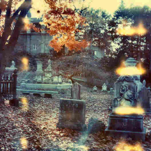Mount Auburn Cemetery, Boston