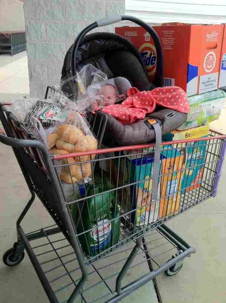 Diana in a shopping cart on one of Christy's recent shopping trips.