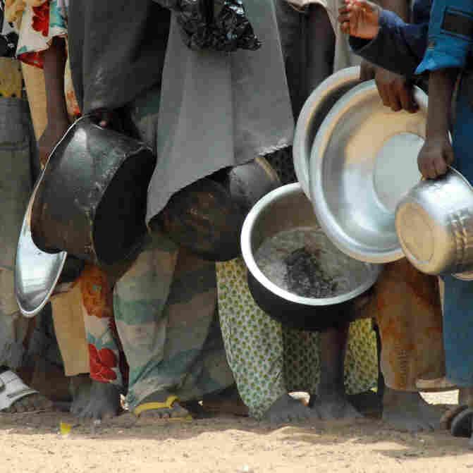 Opportunity In Famine's Toll On Somali Insurgency