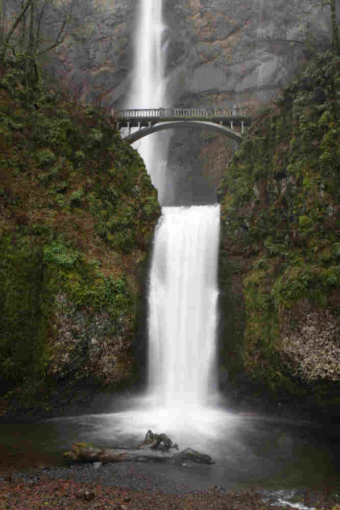 "Co-mingling treated, cleaned wastewater with a natural water supply is one way to remove the psychological contagion from sewage water. ""It's an identity issue, not a contents issue,"" says psychologist Carol Nemeroff. Above, Multnomah Falls in Oregon."