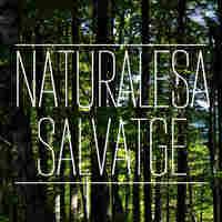 Naturalesa Salvatge.