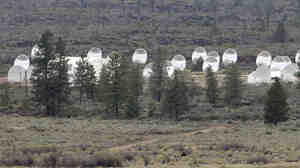 SETI says that its Allen Telescope Array will be back online in September, thanks to funding secured from online donations. The array is seen here, adjacent to a cow pasture in Hat Creek, Calif.